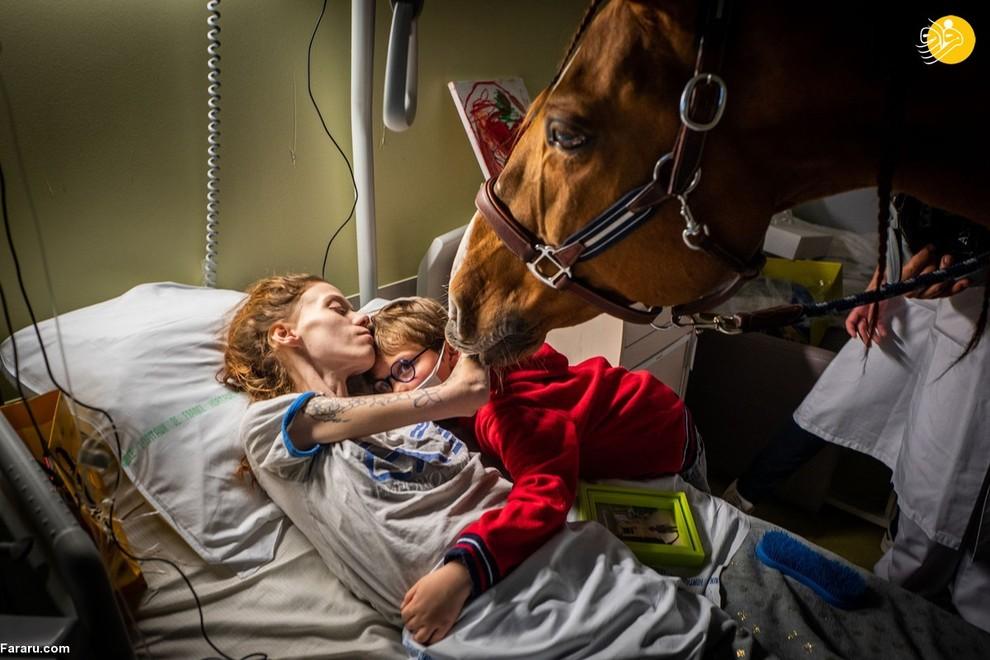 ماریون 24 ساله اهل فرانسه که مبتلا به سرطان است پسرش را در آغوش گرفته است. (عکاس: جرمی لمپین)