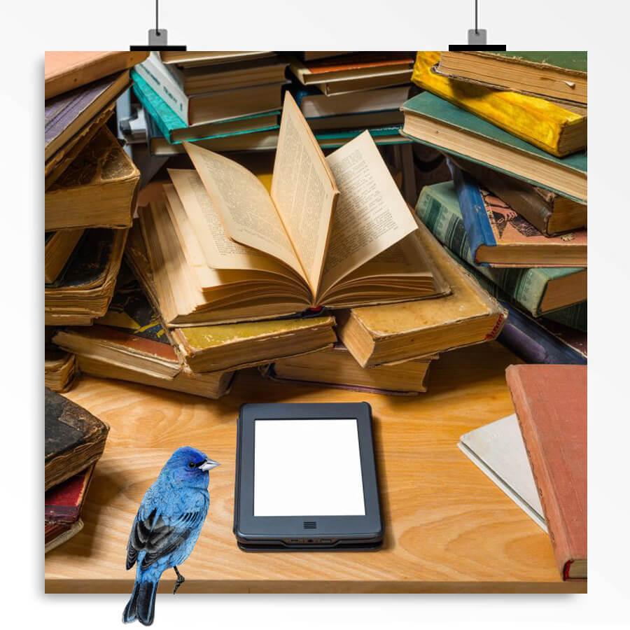 بهترین راه خرید کتاب با ارسال رایگان
