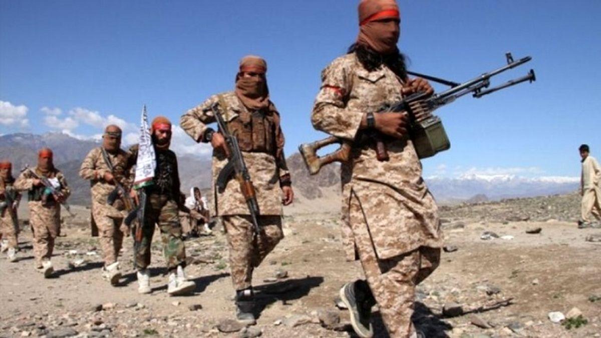 احتمال ظهور القاعده در کنار طالبان؛ آیا کابل در حال سقوط است؟