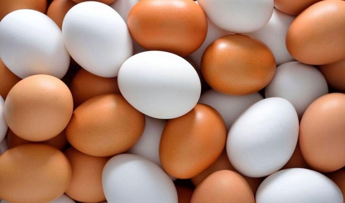 آشفتگی عجیب در بازار تخم مرغ! / هر شانه تخم مرغ هم قیمت 1ماه یارانه