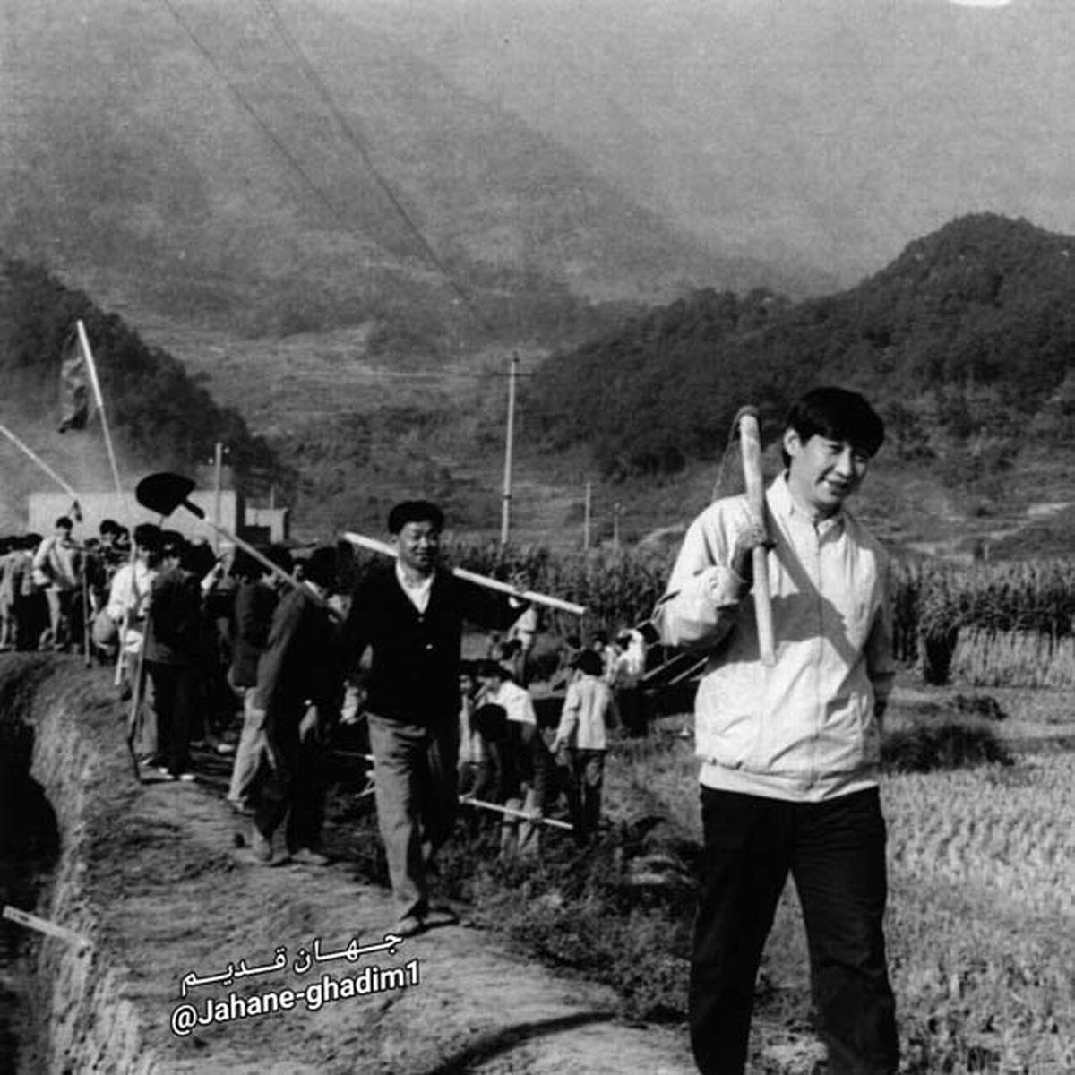 عکسی از جوانی رئیسجمهور کنونی چین (نفر اول) وقتی کشاورز بود