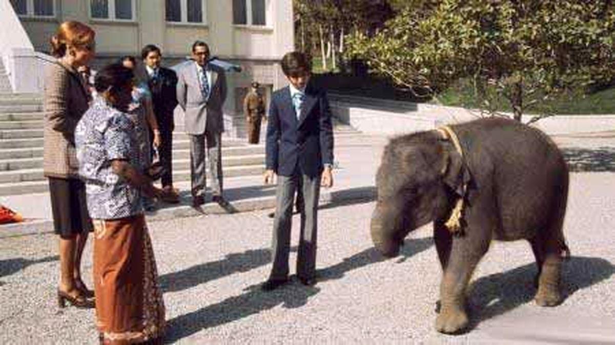 عکس دیده نشده از بچه فیل، هدیه خانواده سلطنتی تایلند به رضا پهلوی