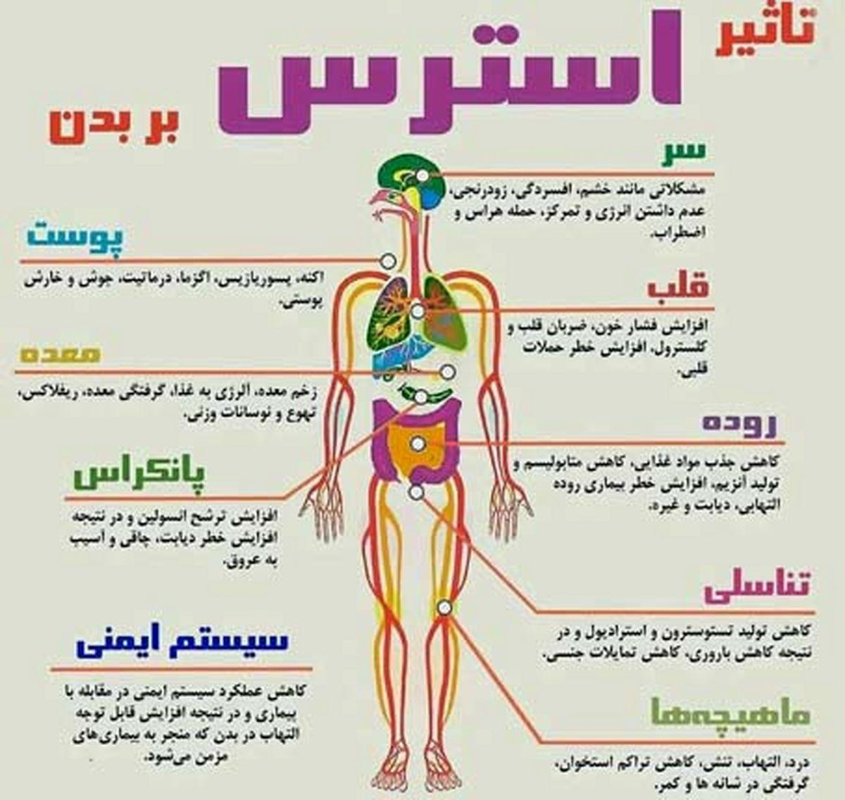 استرس اینگونه بدن را نابود می کند؛عکس