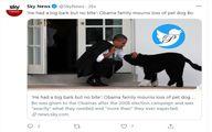 تصویر باراک اوباما و سگش BO که مرد
