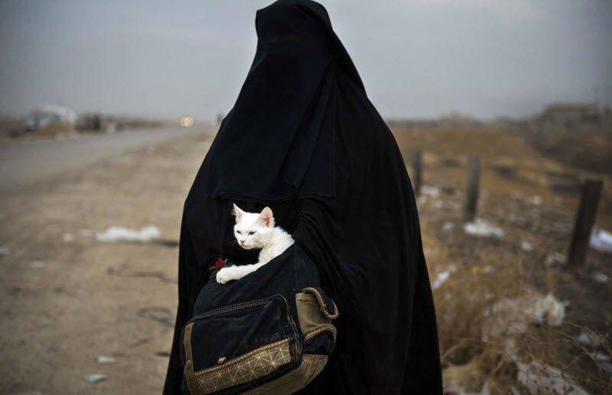 زن محجبهای با گربهاش در هنگام فرار از موصل/عکس