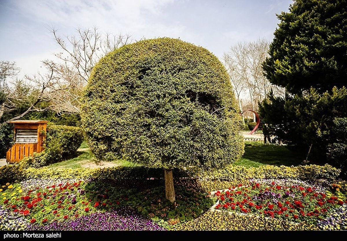 تصاویر زیبا از باغ گلهای اصفهان