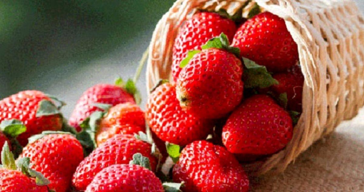خواص شگفت انگیز توت فرنگی برای بدن
