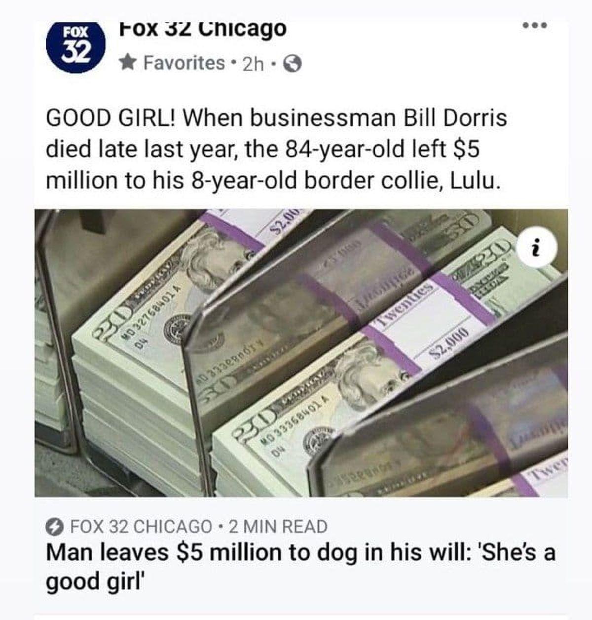 سگ باوفایی وارث پنج میلیون دلار شد! +عکس