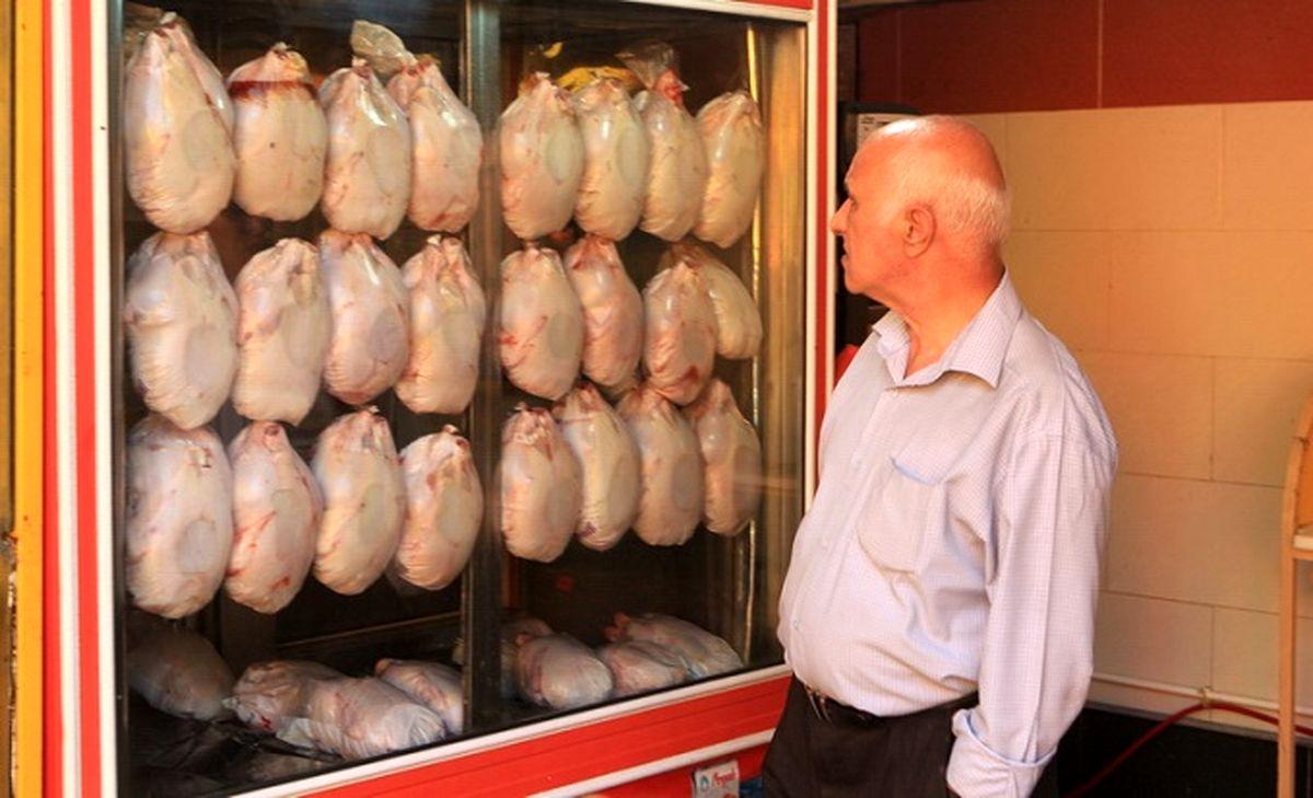 هر دم ازین باغ بری می رسد؛ کوپنی شدن فروش مرغ! + جزئیات