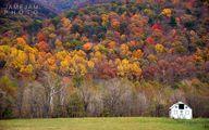 تصاویری زیبا از پاییزی رویایی