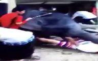 سرگردانی ۲ گردشگر ایرانی در تایلند بعد از حمله یک فیل!