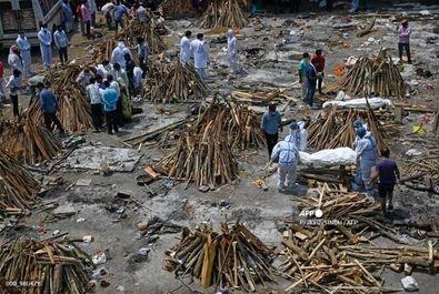 کشتار کرونا در هند