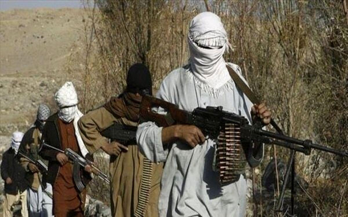 گرایش عجیب راست افراطی امریکا به طالبان