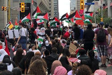 حمایت از غزه