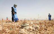 مشارکت زنان عراقی در عملیات مین روبی +عکس